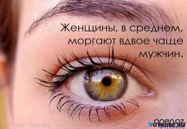 1360229821_1243611301_019 (650x449, 246Kb)