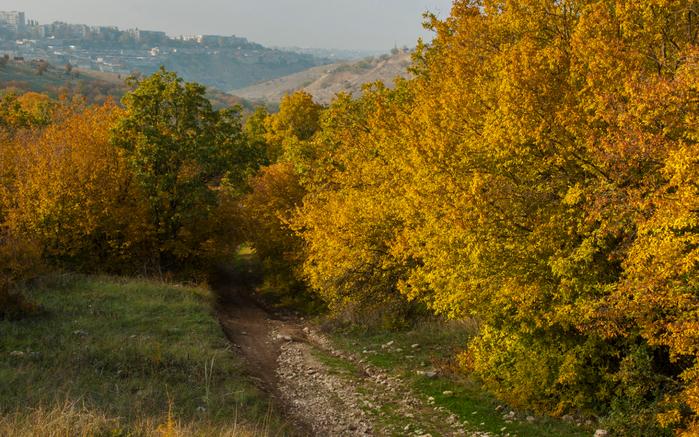 Осенние краски (700x437, 581Kb)