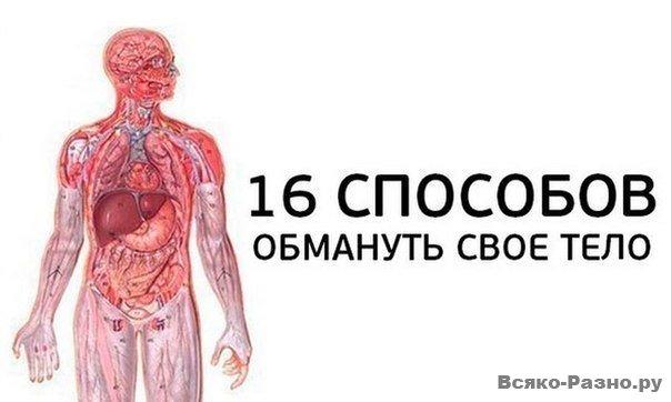 1381914580_h0myqjrvzvu (604x362, 33Kb)