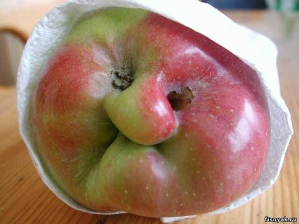 необычной формы фрукты и овощи1с (600x450, 129Kb)
