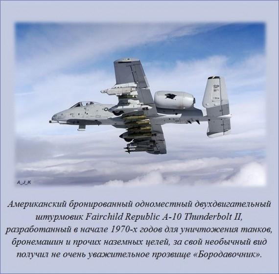 1382136840_fact_05 (570x560, 154Kb)