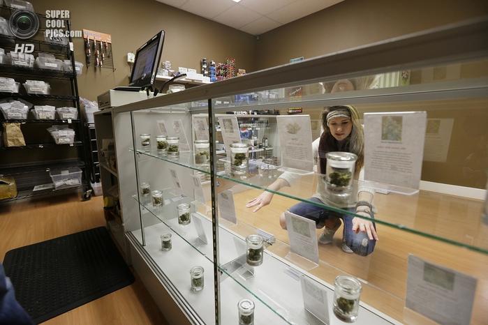 магазин по продаже медицинской марихуаны 1 (700x466, 246Kb)