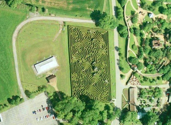 longleat_hedge_maze_11 (694x508, 352Kb)