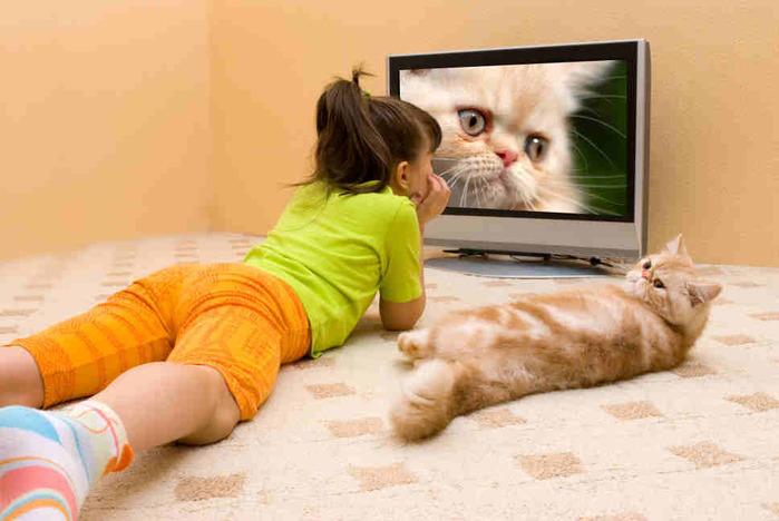 2749438_remont_televizorov (700x468, 90Kb)