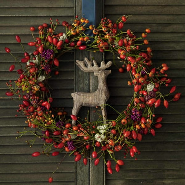autumn-berries-decoration-ideas5-9 (600x600, 198Kb)