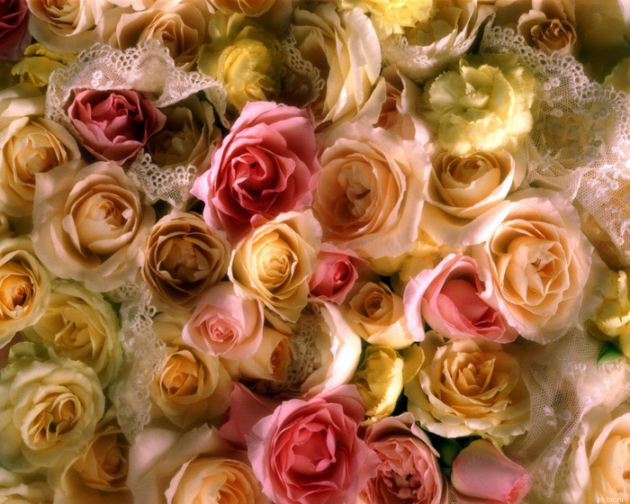 flowers217 (700x560, 178Kb)