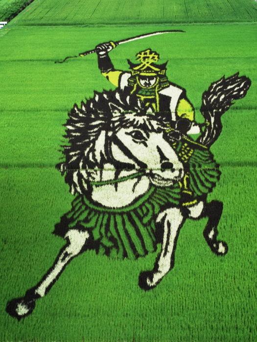 tanbo-japanese-rice-field-art-2 (525x700, 166Kb)