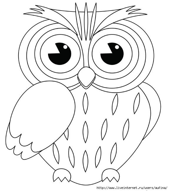 Раскраска сова и