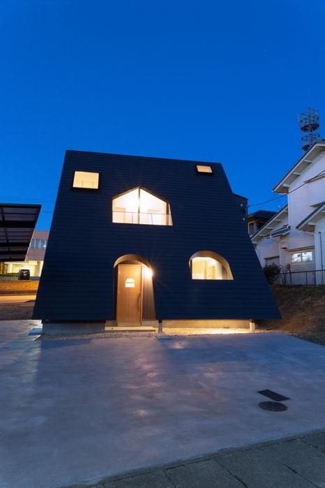 оригинальный проект частного дома фото (466x700, 178Kb)