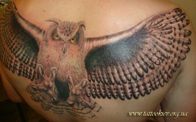 1382559963_phoca_thumb_l_tattoo_salon_kiev_15 (640x399, 50Kb)
