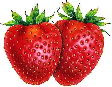 strawberry_drawing-18210 (445x346, 34Kb)