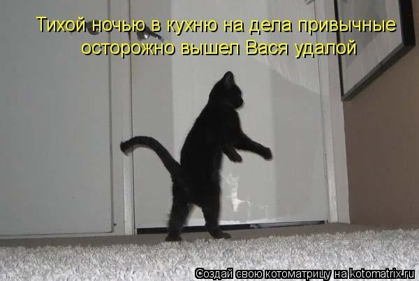 kotomatritsa_tr (600x402, 90Kb)