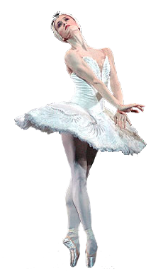 1381700846_jr_swan_lake_nunez_white_pointe_500 (230x390, 62Kb)