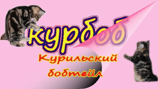 3821971_kyrbob (552x312, 37Kb)