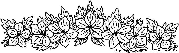 borde68 (700x208, 131Kb)