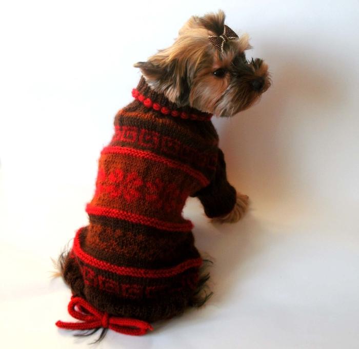 Вязанье для собачек (7) (700x681, 209Kb)