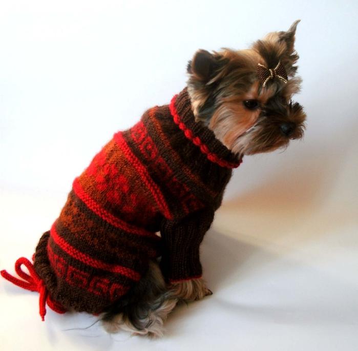 Вязанье для собачек (14) (700x685, 231Kb)