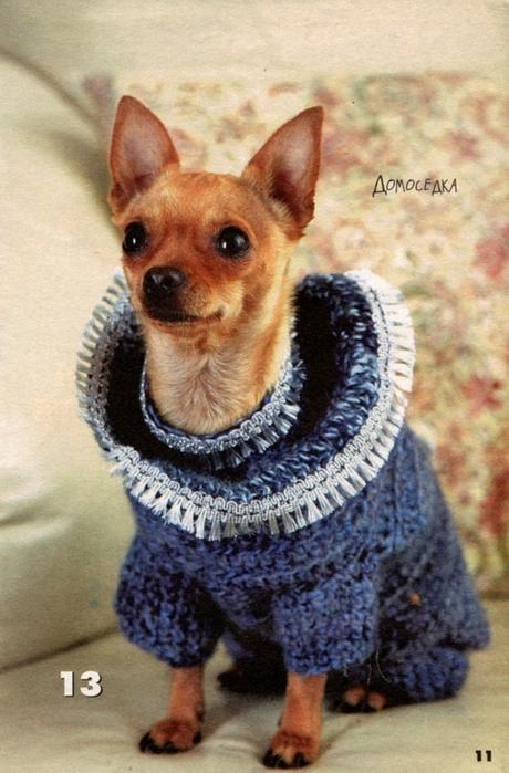 вязаная одежда для собачек (13) (460x699, 274Kb)