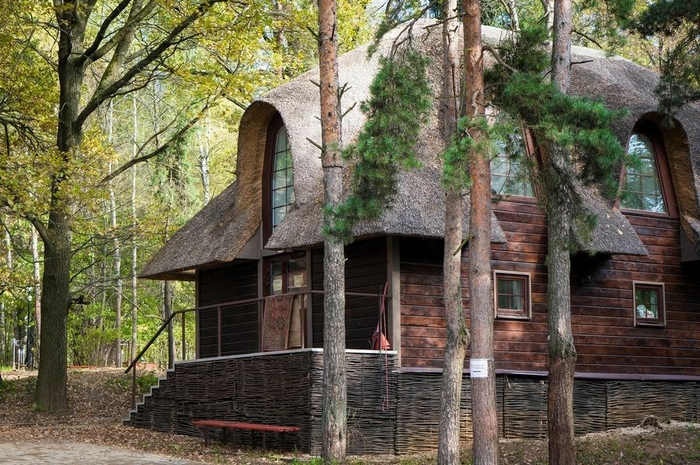 дом в лесу фото 2 (700x465, 324Kb)