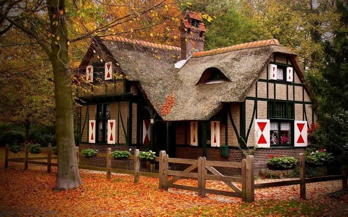 дом в лесу фото 3 (700x437, 310Kb)