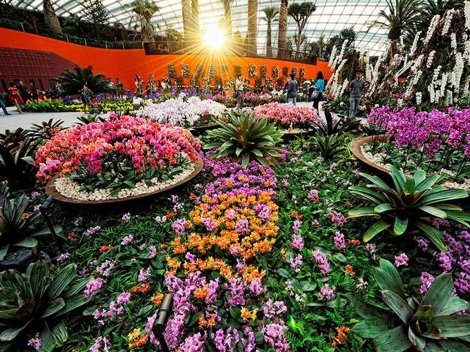 marina_bay_sands_singapur_Sady_u_zaliva_Gardens_by_the_Bay_06 (680x510, 616Kb)