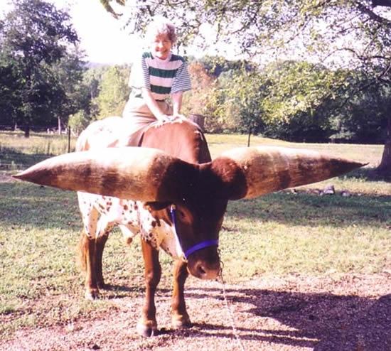 самые большие рога в мире 3 (550x494, 214Kb)