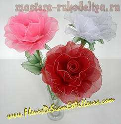 fleur_50 (244x250, 9Kb)