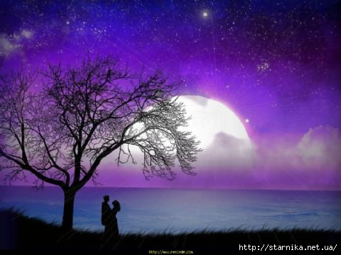 romantik_ask_duvar_kagidi_750665 (480x360, 83Kb)