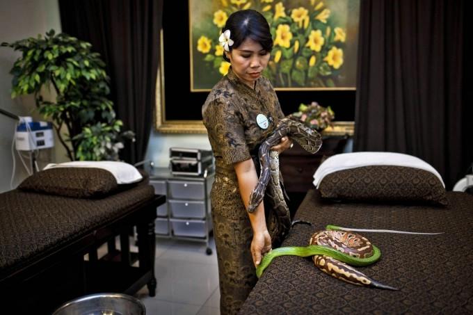 массаж змеями фото 8 (680x453, 157Kb)