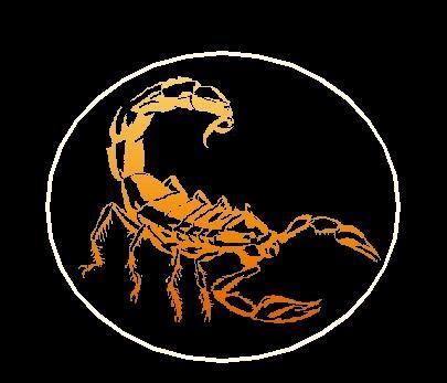 Скорпион жопа фото фото 438-761