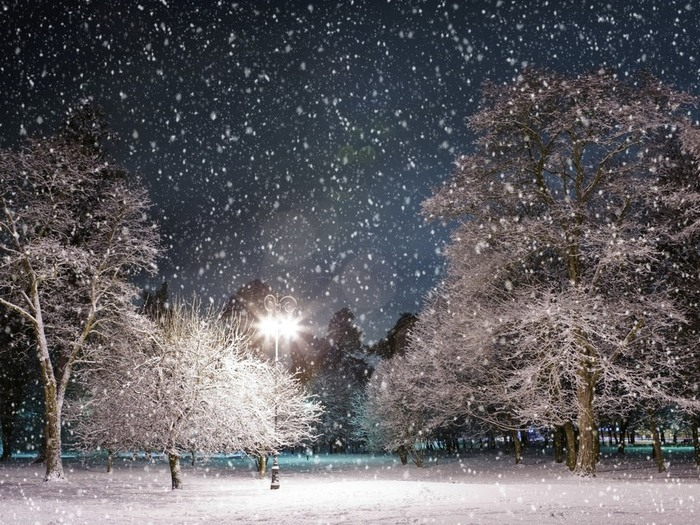 snowfall-in-the-city-park-at-night-under-a-street-lamp_1920x1440 (700x525, 170Kb)