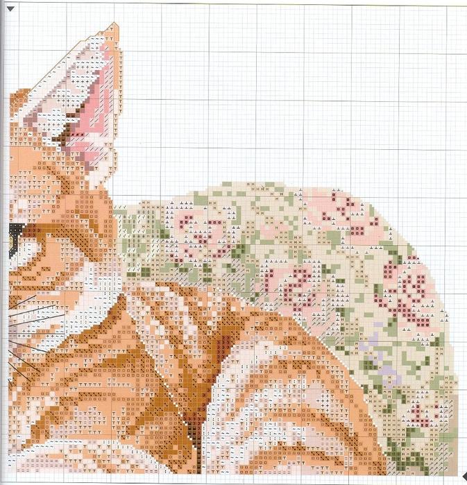 рыжий кот3 (673x700, 434Kb)