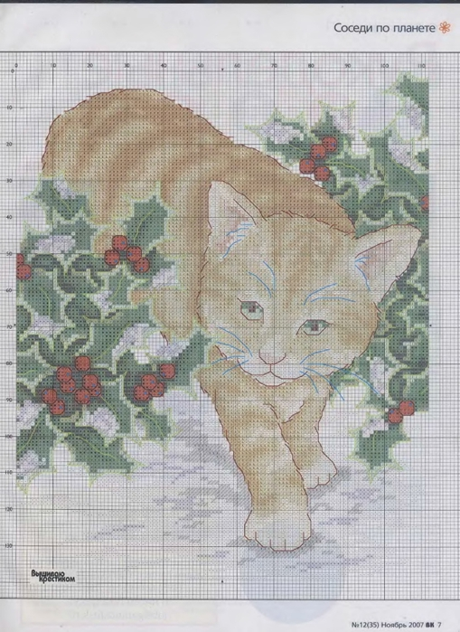 CrossStitcher_12__35__2007.djvu_0009 (509x700, 288Kb)