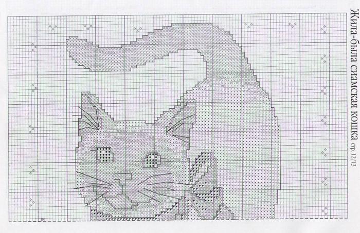 сиам2 (700x454, 298Kb)