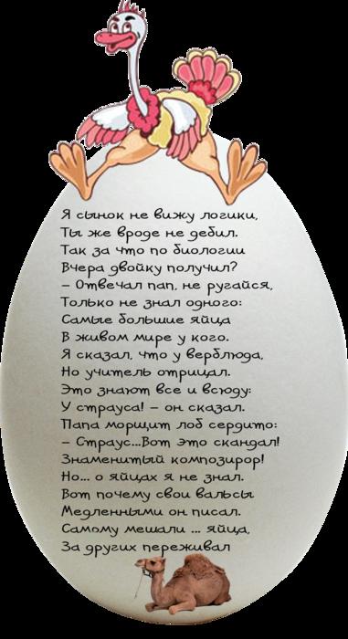 5я (381x700, 391Kb)