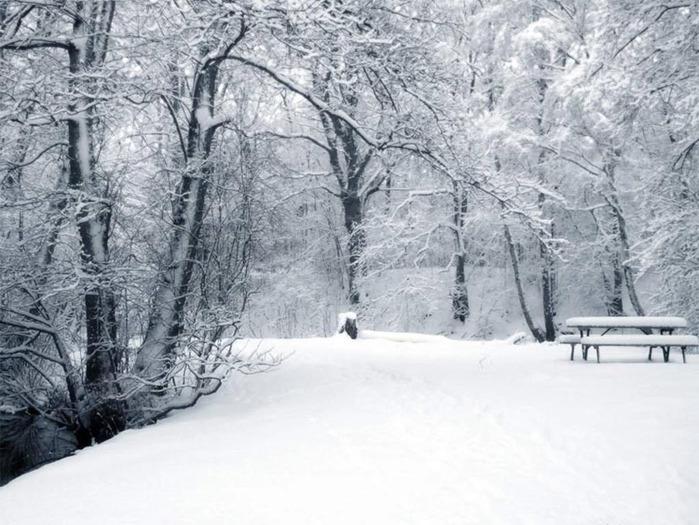 Снег (700x525, 128Kb)