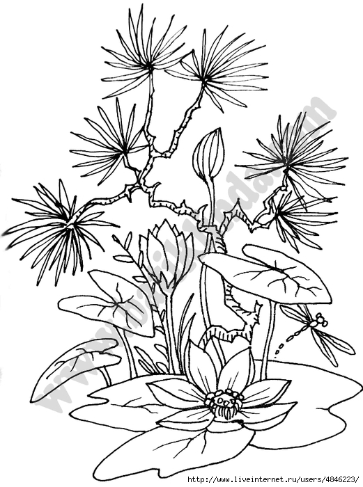 kontur_bonsai (521x700, 229Kb)