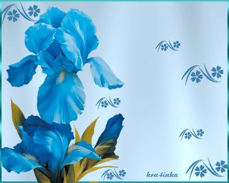 Синий-ирис (450x360, 156Kb)