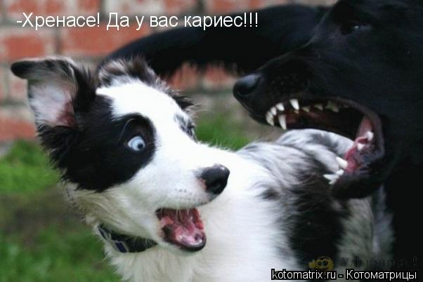 http://img1.liveinternet.ru/images/attach/c/9/106/73/106073481_4432201_8N.jpg