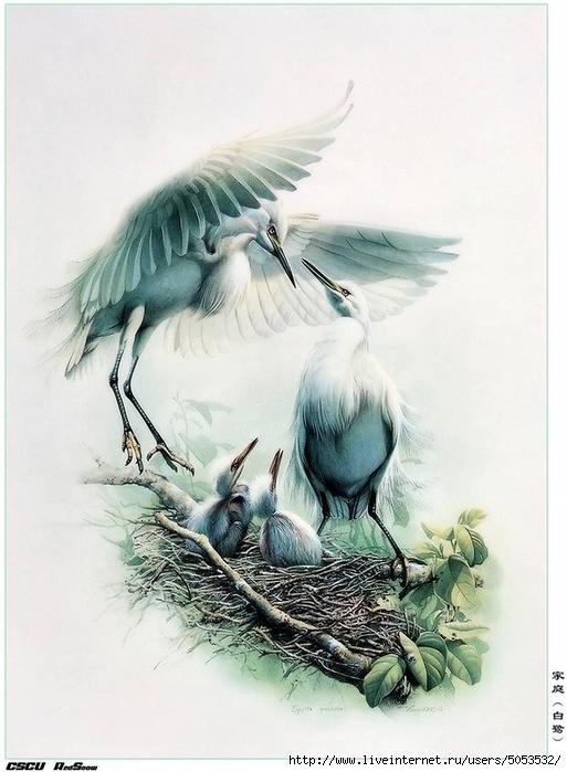 Мир птиц художника Зенг Ксяо 2 (513x700, 227Kb)