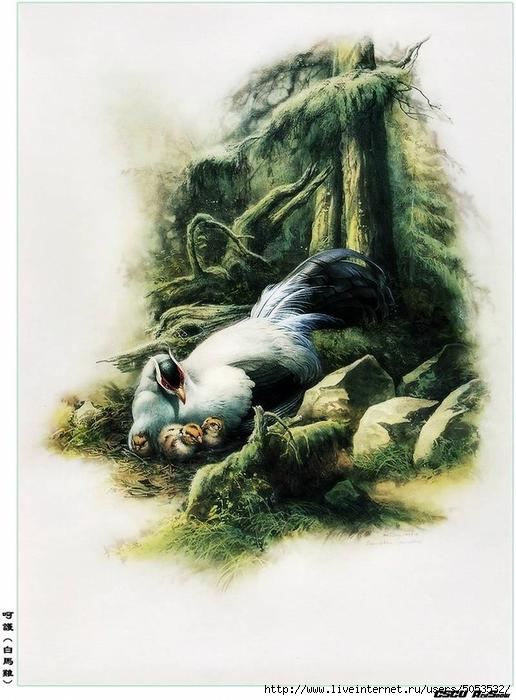 Мир птиц художника Зенг Ксяо 5 (516x700, 249Kb)