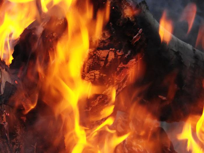 Пламя/1415502_DSC00019_kopiya (700x525, 112Kb)