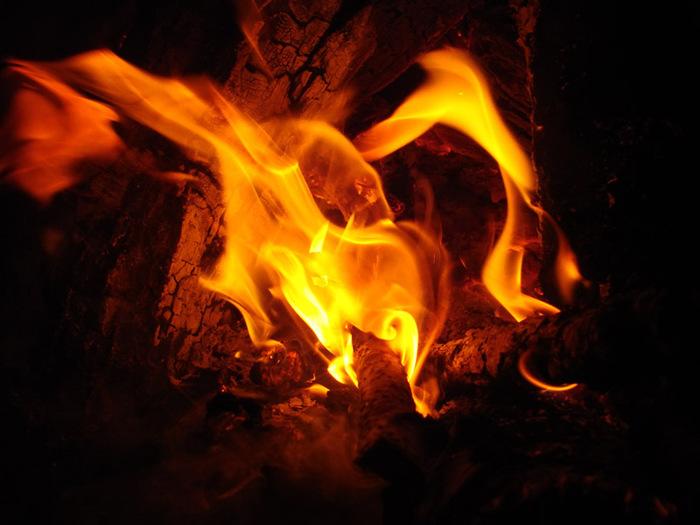 Пламя/1415502_DSC00063_kopiya (700x525, 106Kb)