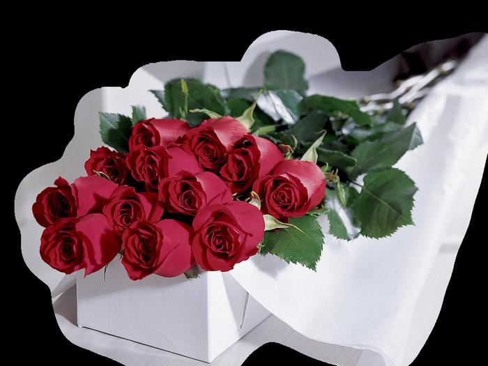 цветы поздрав. (700x525, 480Kb)