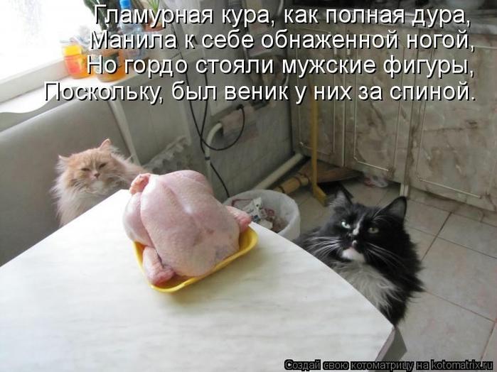 kotomatritsa_Mc (700x524, 220Kb)