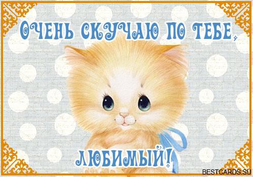 1383743770_otkrytkalubimomumuzhchineskuchayu (500x350, 66Kb)