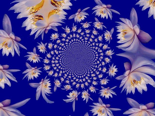 цветочный водоворот (640x480, 76Kb)