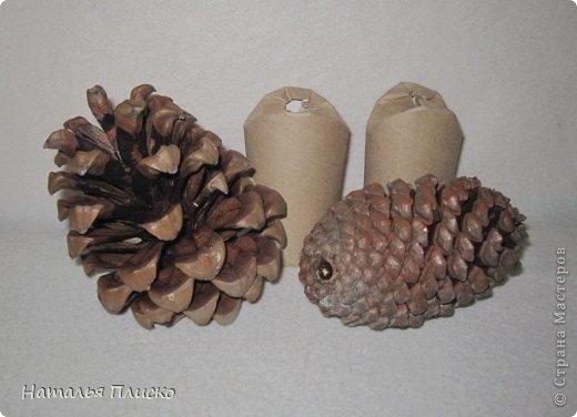 Прикольные ежики - подвески из шишек и рулончиков от туалетной бумаги (1) (520x376, 86Kb)