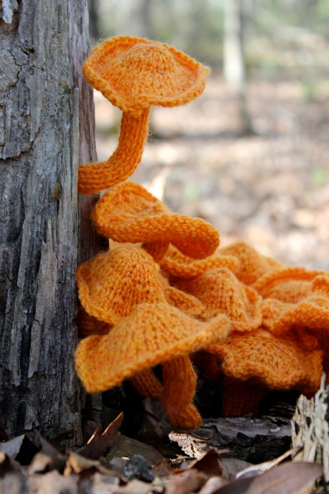 грибы2 (466x700, 248Kb)