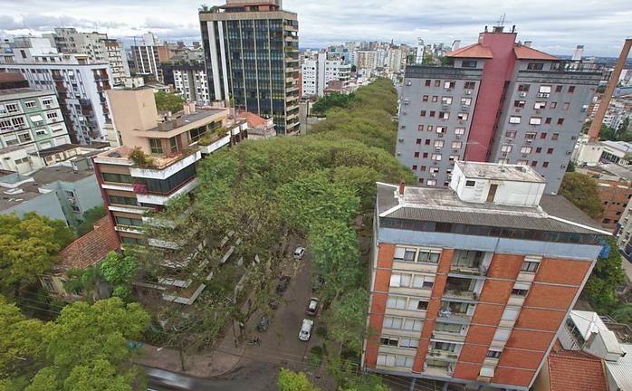 Руа Гонсалу де Карвальо фото 3 (700x432, 390Kb)